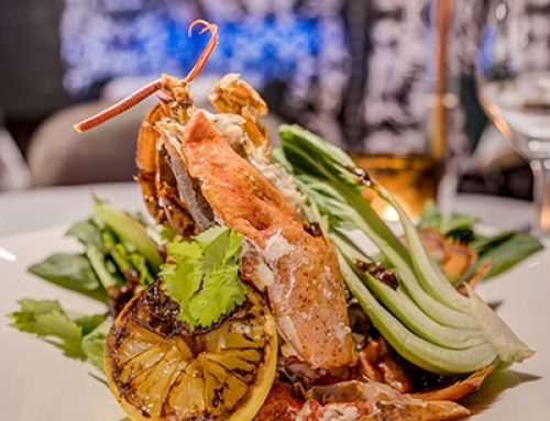 Lobster & Ox